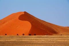 Αμμόλοφος Namib Στοκ φωτογραφία με δικαίωμα ελεύθερης χρήσης