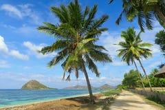Αμμώδης δρόμος κατά μήκος της ωκεάνιας ακτής με το τυρκουάζ νερό, τους βράχους και τους πράσινους φοίνικες, Sumbawa, Ινδονησία στοκ εικόνες