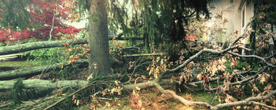 Αμμώδης ζημία τυφώνα Στοκ εικόνες με δικαίωμα ελεύθερης χρήσης