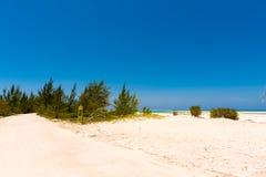 Αμμώδης παράδεισος Playa παραλιών του νησιού Cayo βραδύτατου, Κούβα Διάστημα αντιγράφων για το κείμενο Στοκ εικόνες με δικαίωμα ελεύθερης χρήσης