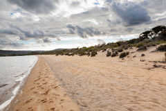 Αμμώδης παραλία κοντά σε Walpole Στοκ Φωτογραφίες