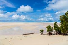 Αμμώδης παραλία παραδείσου της κυανής τυρκουάζ μπλε ρηχής λιμνοθάλασσας, ατόλλη βόρειου Tarawa, Κιριμπάτι, νησιά του Gilbert, Μικ στοκ εικόνες