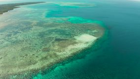 Αμμώδης παραλία σε μια κοραλλιογενή ύφαλο Balabac, Palawan, Φιλιππίνες απόθεμα βίντεο