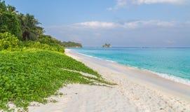 Αμμώδης παραλία Royale Anse σε Mahe Σεϋχέλλες Στοκ φωτογραφία με δικαίωμα ελεύθερης χρήσης