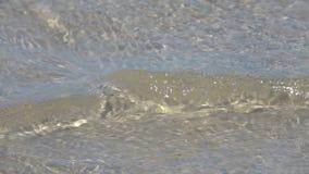 Αμμώδης όχθη της λίμνης κίνηση αργή απόθεμα βίντεο