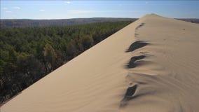 Αμμώδης barkhan της βόρειας ερήμου φιλμ μικρού μήκους