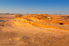 Αμμώδεις αμμόλοφοι στην έρημο κοντά στο Αμπού Ντάμπι Στοκ Φωτογραφία