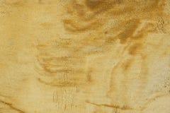 Αμμώδης επιφάνεια Στοκ Εικόνες