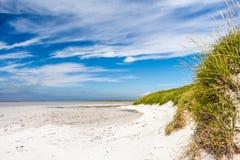 Αμμώδης παραλία με το χλοώδη αμμόλοφο άμμου Στοκ εικόνα με δικαίωμα ελεύθερης χρήσης
