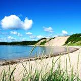 Αμμώδης παραλία στην αγροτική νέα γη στοκ εικόνα