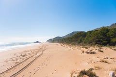 Αμμώδης παραλία Playa παραλιών που σχίζεται Διάστημα αντιγράφων για το κείμενο Στοκ Φωτογραφία