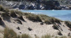 Αμμώδης περιοχή με τους αμμόλοφους στην παραλία Στοκ φωτογραφίες με δικαίωμα ελεύθερης χρήσης