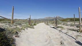 Αμμώδης περιοχή με τους αμμόλοφους στην παραλία Στοκ Φωτογραφίες