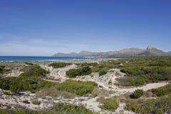 Αμμώδης περιοχή με τους αμμόλοφους στην παραλία Στοκ Εικόνες