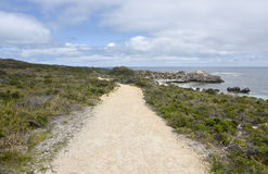 Αμμώδης πορεία ακτών στοκ εικόνες με δικαίωμα ελεύθερης χρήσης