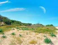 Αμμώδη ακτή και φεγγάρι Στοκ φωτογραφία με δικαίωμα ελεύθερης χρήσης
