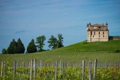 Αμπελώνας και Chateau de Monbadon, περιοχή του Μπορντώ, της Γαλλίας στοκ εικόνες