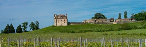Αμπελώνας και Chateau de Monbadon, περιοχή του Μπορντώ, της Γαλλίας στοκ εικόνα με δικαίωμα ελεύθερης χρήσης