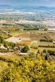 αμπελώνας, Gordes, Προβηγκία, Γαλλία στοκ φωτογραφία με δικαίωμα ελεύθερης χρήσης
