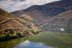 Αμπελώνες της Douro κοιλάδας, Πορτογαλία Στοκ φωτογραφίες με δικαίωμα ελεύθερης χρήσης