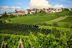 Αμπελώνες τοπίων της διαδρομής κρασιού Γαλλία, Αλσατία στοκ εικόνα
