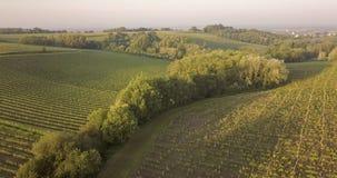 Αμπελώνες του Μπορντώ, Entre Deux Mers, Aquitaine, Gironde τμήμα, εναέρια άποψη στοκ φωτογραφία με δικαίωμα ελεύθερης χρήσης