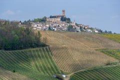 Αμπελώνες Oltrepo Pavese τον Απρίλιο στοκ εικόνα