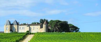 Αμπελώνας και πύργος, περιοχή του Sauterne, Aquitaine, Γαλλία στοκ φωτογραφία με δικαίωμα ελεύθερης χρήσης