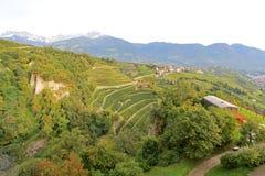Αμπελώνες και φυτεία της Apple στο νότιο Τύρολο, Ιταλία Στοκ φωτογραφία με δικαίωμα ελεύθερης χρήσης