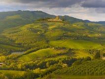 αμπελώνες της Ιταλίας Το στοκ φωτογραφία με δικαίωμα ελεύθερης χρήσης