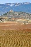 Αμπελώνες το φθινόπωρο, Λα Rioja, Ισπανία Στοκ Φωτογραφίες