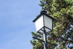 λαμπτήρας παλαιός Στοκ Φωτογραφία