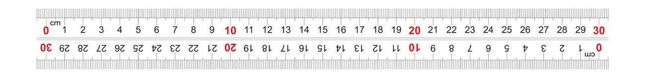 Αμφίδρομος διπλός κυβερνητών που πλαισιώνεται 300 χιλιοστόμετρο, εκατοστόμετρο 30 Η τιμή τμήματος είναι 1 χιλ. Πλέγμα βαθμολόγηση ελεύθερη απεικόνιση δικαιώματος