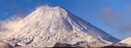 ΑΜ εθνικό νέο ηφαίστειο Ζηλανδία tongariro πάρκων ngauruhoe ΑΜ Στοκ Εικόνα