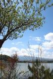 ΑΜ Φούτζι στη λίμνη Kawaguchi Στοκ Εικόνες