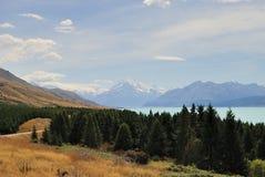 ΑΜ Cook, μπλε λίμνη και δάση Νέα Ζηλανδία Στοκ φωτογραφία με δικαίωμα ελεύθερης χρήσης