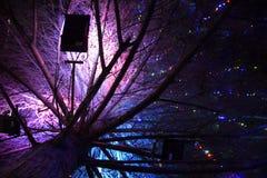 Ανάβοντας το χριστουγεννιάτικο δέντρο μέσα Παιχνίδια Χριστουγέννων νύχτας Ντυμένο χριστουγεννιάτικο δέντρο στην οδό Στοκ Φωτογραφία
