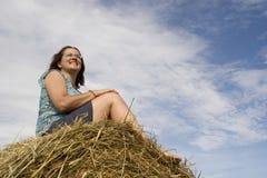 ανάγλυφο έννοιας hayfever Στοκ εικόνα με δικαίωμα ελεύθερης χρήσης