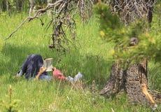 Ανάγνωση βιβλίων κάτω από ένα δέντρο Στοκ εικόνες με δικαίωμα ελεύθερης χρήσης
