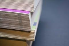 Ανάγνωση μερικών βιβλίων Στοκ Εικόνες