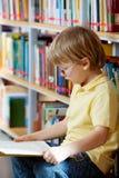 Ανάγνωση στη βιβλιοθήκη στοκ φωτογραφίες με δικαίωμα ελεύθερης χρήσης