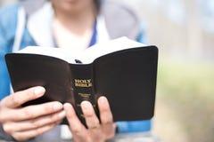 Ανάγνωση της Βίβλου Στοκ εικόνα με δικαίωμα ελεύθερης χρήσης