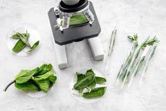 Ανάλυση της έννοιας τροφίμων υγιή προϊόντα Δεντρολίβανο χορταριών, μέντα κάτω από το μικροσκόπιο στην γκρίζα τοπ άποψη υποβάθρου στοκ φωτογραφίες