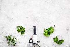 Ανάλυση τροφίμων Ελεύθερα λαχανικά φυτοφαρμάκων Δεντρολίβανο χορταριών, μέντα κοντά στο μικροσκόπιο στο γκρίζο διάστημα αντιγράφω στοκ εικόνες