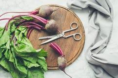 Ανάμεικτα ακατέργαστα οργανικά λαχανικά στοκ εικόνες με δικαίωμα ελεύθερης χρήσης