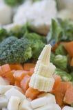 Ανάμεικτα λαχανικά περικοπών Κουνουπίδι μπρόκολου παστινακών καλαμποκιού καρότων Στοκ Φωτογραφία