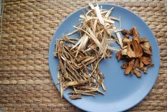 Ανάμεικτα κινεζικά παραδοσιακά χορτάρια ιατρικής σε ένα πιάτο Στοκ Εικόνες