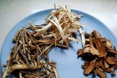 Ανάμεικτα κινεζικά παραδοσιακά χορτάρια ιατρικής σε ένα πιάτο Στοκ Εικόνα