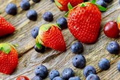 Ανάμεικτα μούρα, βακκίνια, βατόμουρα, φράουλες, σμέουρα, οργανικά υγιή ανάμεικτα juicy φρούτα Στοκ εικόνες με δικαίωμα ελεύθερης χρήσης