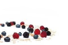Ανάμεικτα μούρα και oatmeal που απομονώνονται Στοκ Εικόνες